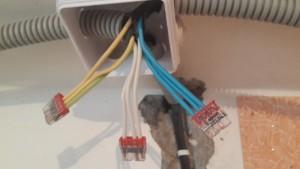 распределительная электрическая коробка